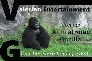 animatronic gorilla, real life gorrila, movie gorilla, gorilla for hire. Hire a gorilla. Book and animatronic gorilla. Gorilla suit for hire.