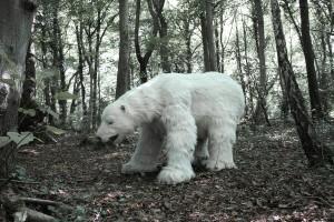 Animatronic Polar Bear
