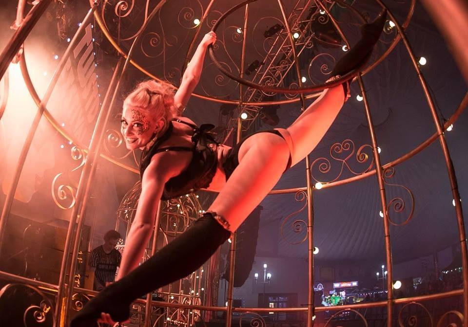 Hire a circus
